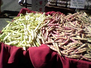 Cattle Beans (left) and Cranberry Beans (right)